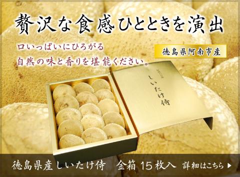 贅沢な食感ひとときを演出 徳島県産しいたけ侍 金箱15枚入